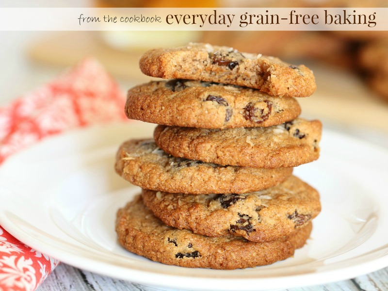 everyday grainfree baking almost oatmeal cookies